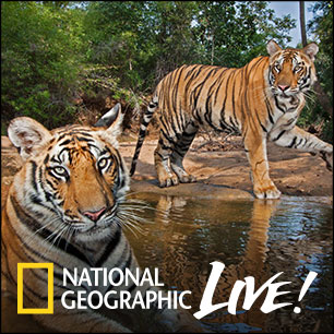 UCSB to present National Geographic Live wildlife photographer Steve Winter on March 6