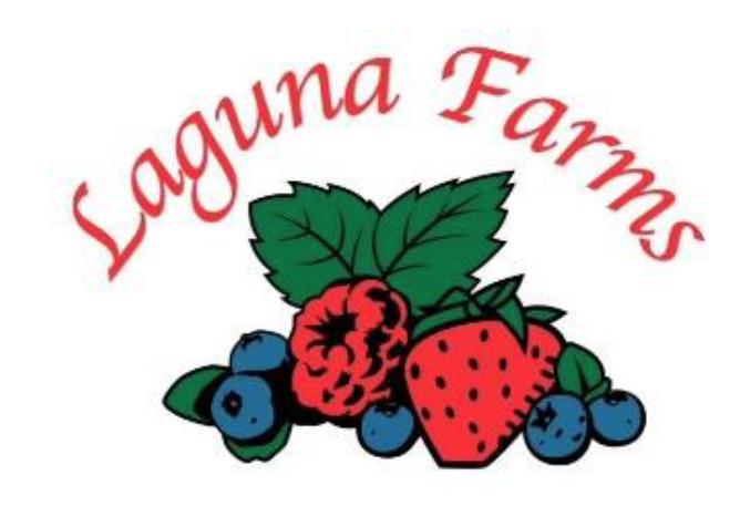 Ventura County Board of Supervisors Presents Laguna Farms With Health Champion Award