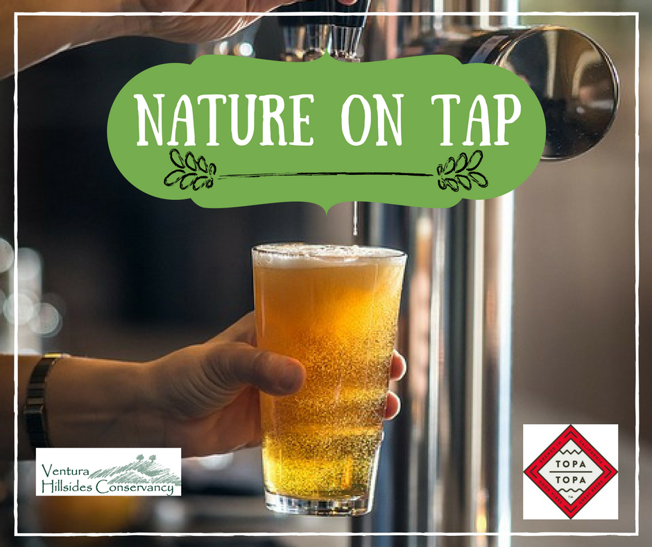 July 24, Aug. 28, Sept. 28 — Ventura Hillsides Conservancy serves up 'Nature on Tap' – a summertime series of environmental lectures at Ventura's Topa Topa Brewing Company