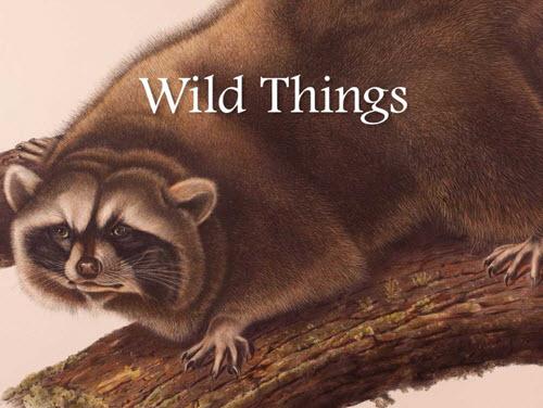 Oct. 14-15 — Santa Barbara Museum of Natural History Hosts Naturally Wild Weekend